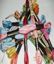 ANCHOR multicolor